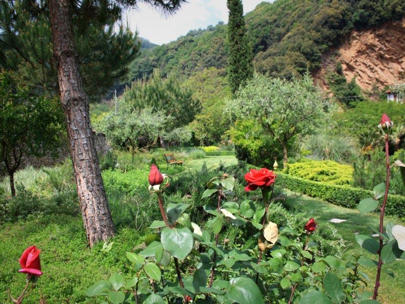 01-giardino-mediterraneo