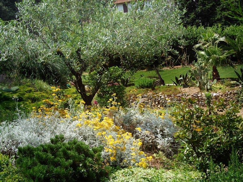 06-giardino-mediterraneo