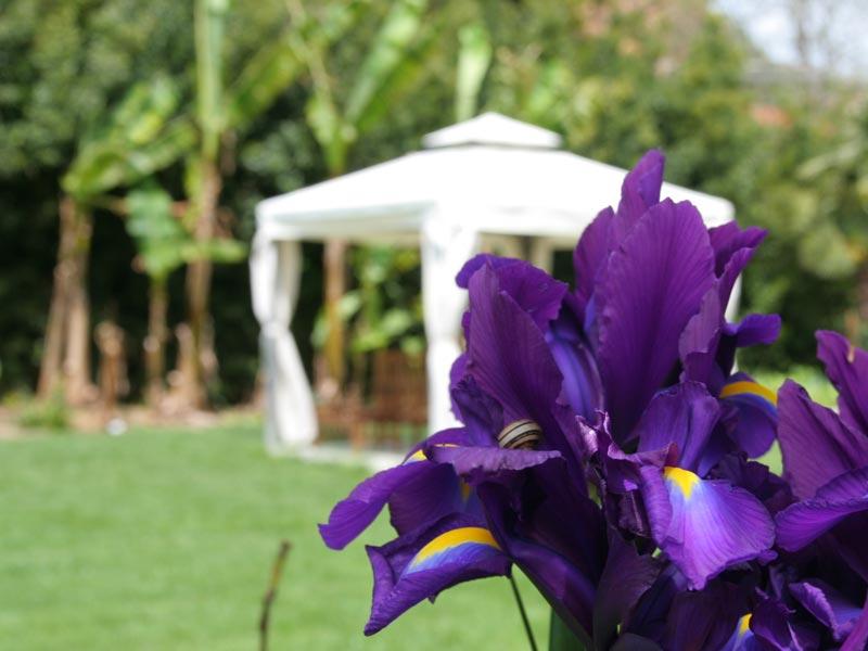 06-giardino-subtropicale