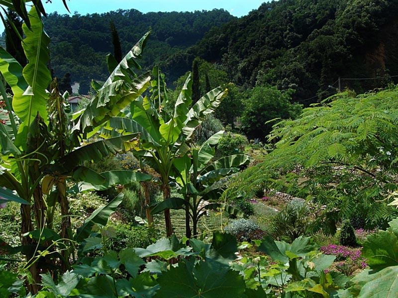 10-giardino-subtropicale