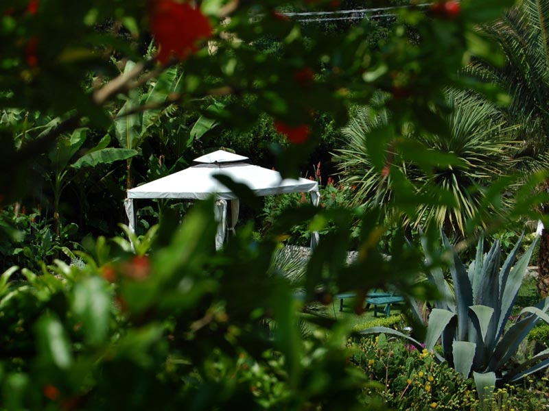 11-giardino-subtropicale