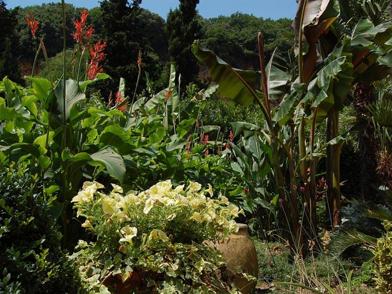 12-giardino-subtropicale