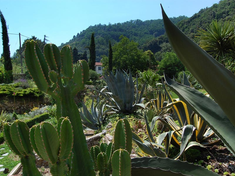 13-giardino-semidesertico
