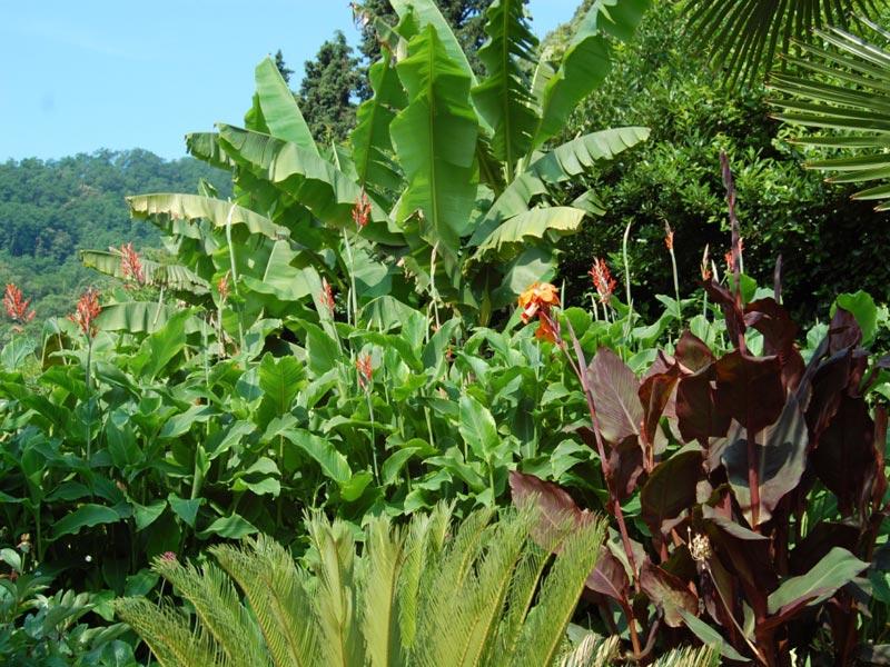13-giardino-subtropicale